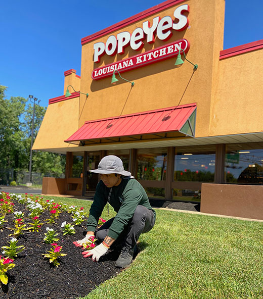 popeyes-landscaping